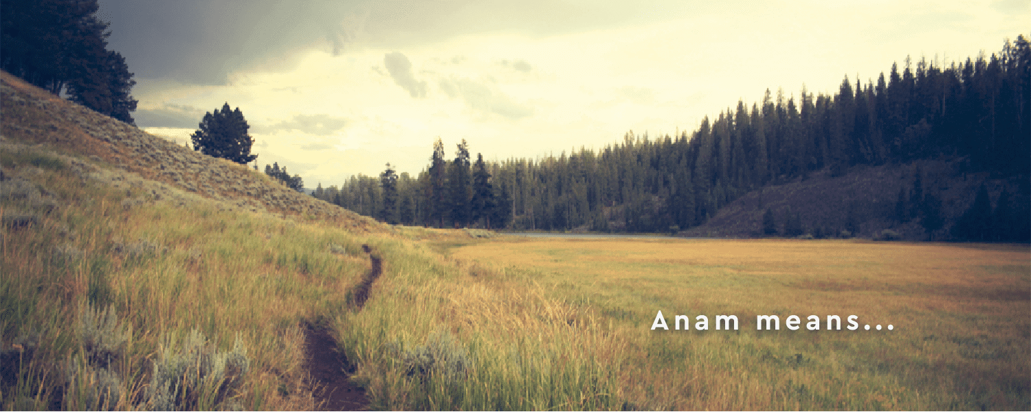 AnamBliss Meaning